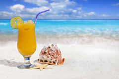 Fruit Cocktail with Orange and Drinking Straw Stock Image