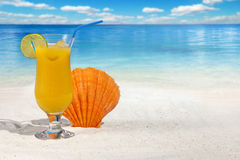 Fruit Cocktail with Orange and Scallop Seashell Royalty Free Stock Photography