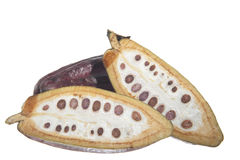 Fruit of the cocoa tree Stock Photo