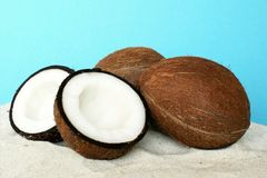 Fruit coconut Stock Photo