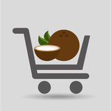 Fruit coconut carry buying icon graphic Royalty Free Stock Photo