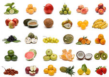 Fruit collection. stock photo