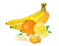 Fruit collection, banana orange lemon. vector illustration Royalty Free Stock Photography