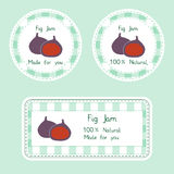 Fruit collection for design. Labels for homemade natural fig jam in green and violet color. Fruit collection for design. Labels for homemade natural. Fig jam in Stock Image