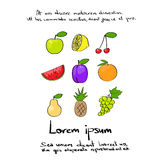 Fruit Collection Hand Draw Logo Color Stock Photography