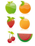 Fruit collection (Vector) Stock Photography