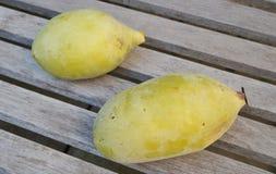 Fruit commun de papaye Image libre de droits