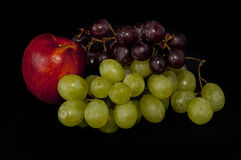 Fruit composition, still life Royalty Free Stock Photo