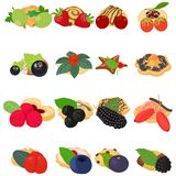Fruit cookie icons set, isometric style. Fruit cookie icons set. Isometric set of 16 fruit cookie vector icons for web isolated on white background royalty free illustration