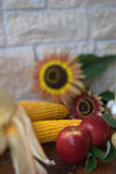 Fruit and corn Stock Photography