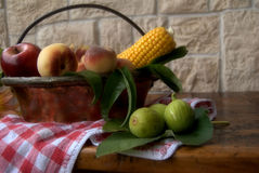 Fruit and corn Royalty Free Stock Image