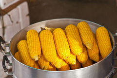 Fruit, corn in boiler Stock Photo