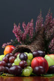 Fruit cornucopia Royalty Free Stock Photo