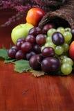 Fruit cornucopia Royalty Free Stock Photos