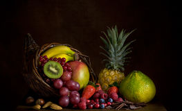 Fruit Cornucopia. Cornucopia with fresh fruit like a paint Royalty Free Stock Image