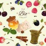 Fruit cosmetic seamless pattern Stock Photo