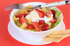 Fruit and Cottage Cheese Salad Royalty Free Stock Photography