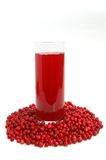 Fruit cranberries drink Stock Images