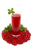 Fruit cranberries drink Royalty Free Stock Photos
