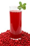 Fruit cranberries drink Royalty Free Stock Photography