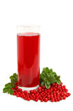 Fruit cranberries drink Royalty Free Stock Images