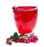 Fruit cranberries drink Stock Image