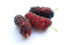 Ripe mulberry fruit on white background Royalty Free Stock Image
