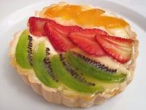 Fruit Custard Tart royalty free stock image