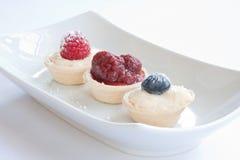 Fruit & Custard Tarts. Raspberry & blueberry custard tarts in a white dish Stock Photography