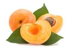 Fruit d'abricot sur le blanc Photo stock