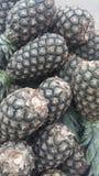 Fruit d'ananas Photos libres de droits