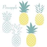 Fruit d'ananas Illustration de vecteur Photographie stock libre de droits