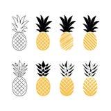 Fruit d'ananas Illustration de vecteur illustration de vecteur