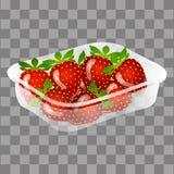 Fruit d'illustration de vecteur de paquet de fraise Photographie stock libre de droits