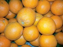 Fruit d'orange douce photographie stock libre de droits