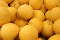 Fruit d'Oroblanco Images libres de droits