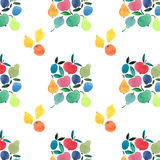 Fruit dans la place avec le modèle d'agrume Photo stock