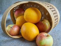 Fruit dans le panier Photo libre de droits