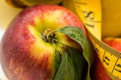 Fruit dans un vase en cristal Images stock