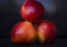 Fruit on a dark background. Three ripe niktarina on a dark background Royalty Free Stock Photo