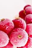 Fruit dat in ijs wordt bevroren stock foto's