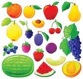 Fruit dat met kleurenoverzichten wordt geplaatst Stock Afbeeldingen