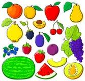 Fruit dat met zwarte overzichten wordt geplaatst Stock Afbeelding