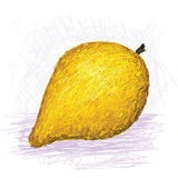 Fruit de Canistel, eggfruit Photographie stock libre de droits