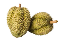 Fruit de Durain sur le fond blanc Image libre de droits