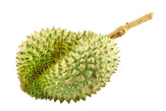 Fruit de durian Photographie stock libre de droits