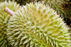 Fruit de durian Photographie stock