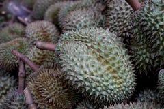 Fruit de durian ; le roi du fruit image stock