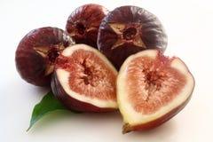 Fruit de Ficus carica photo stock