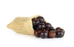 Fruit de Flacourtia dans l'ACK sur le fond blanc Photographie stock libre de droits